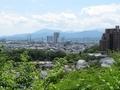 2021/05/31/西展望台広場