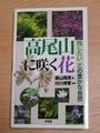 高尾山に咲く花1