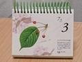 安藤牧子毎年カレンダー 北海道物語2
