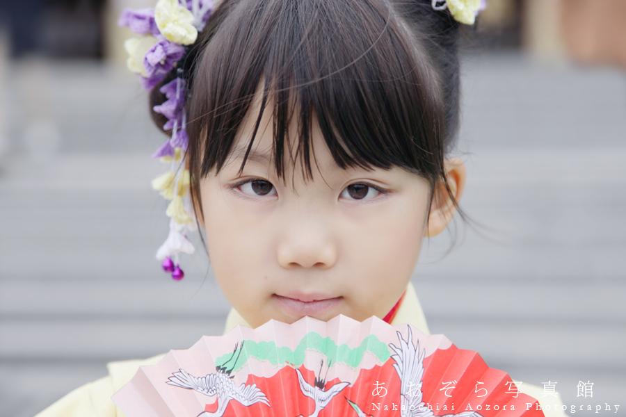 f:id:Nakaochiai_Aozora_Photography:20160426144210j:plain