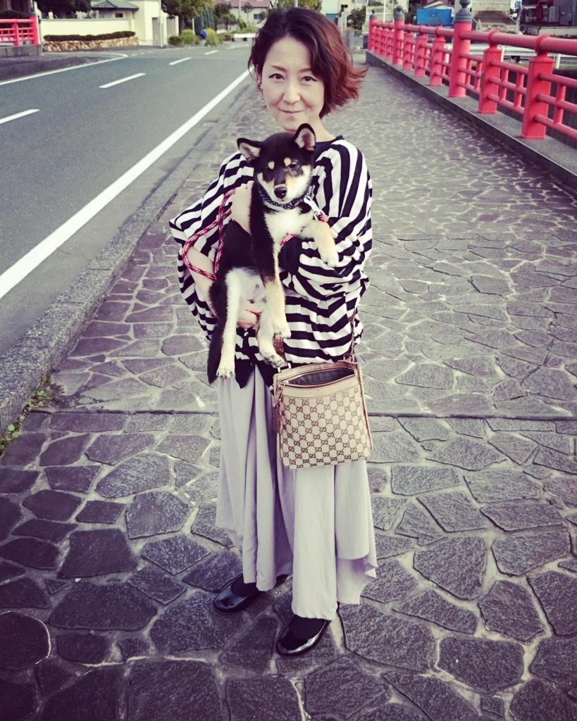 f:id:NanaToYamato:20161104110047j:plain