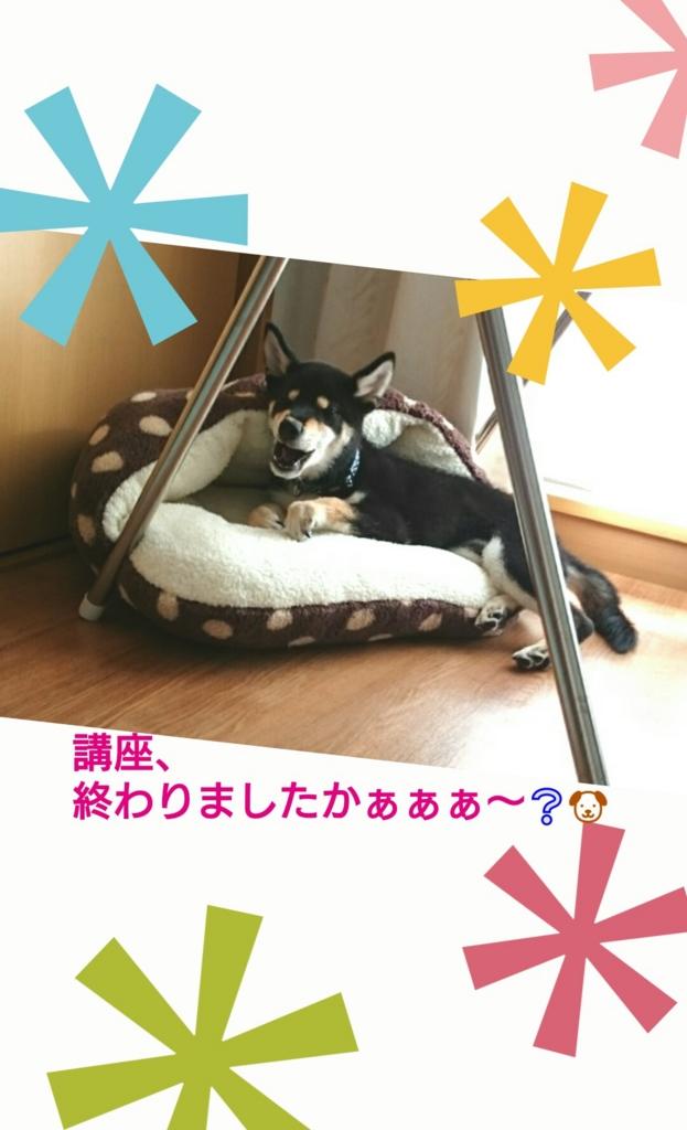 f:id:NanaToYamato:20161108140727j:plain