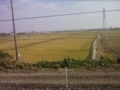 f:id:Nanjai:20101107121340j:image:medium