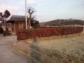 f:id:Nanjai:20110109160720j:image:medium