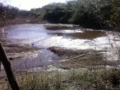 f:id:Nanjai:20110302140710j:image:medium