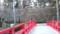岡崎城石垣