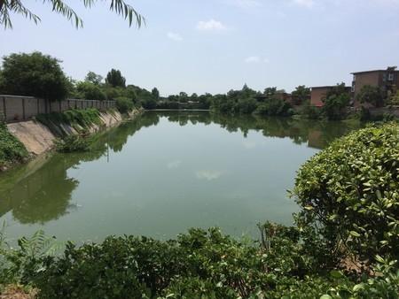 f:id:Nanjai:20190813122030j:plain