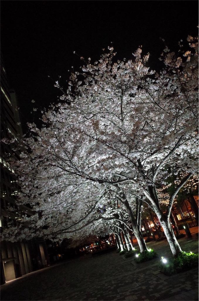 f:id:NaotoAizawa:20170405232801j:image