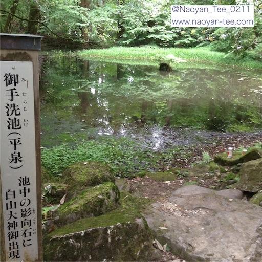 f:id:Naoyan:20160608233113j:image