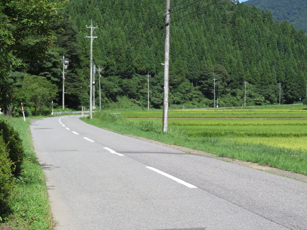 f:id:NaritaSkyAccess:20200406205637j:image