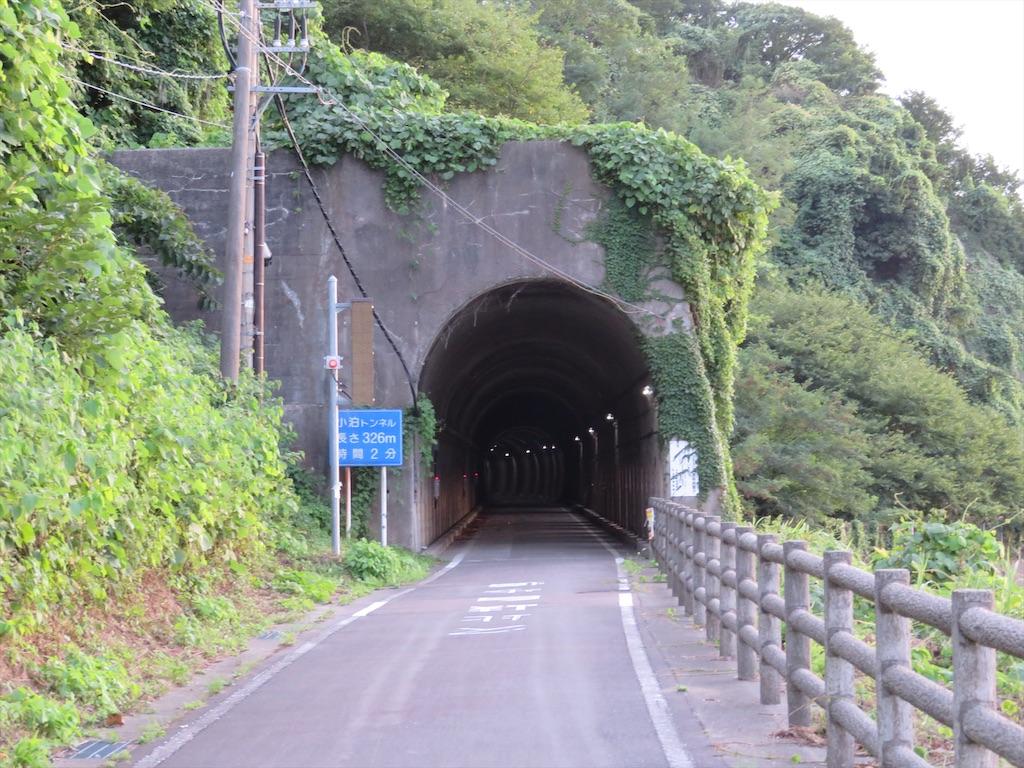 f:id:NaritaSkyAccess:20200406210348j:image