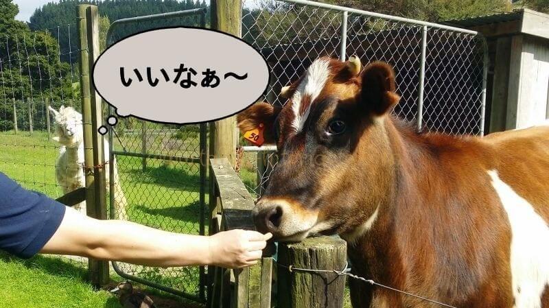 f:id:Nariyuki:20180425065232j:plain