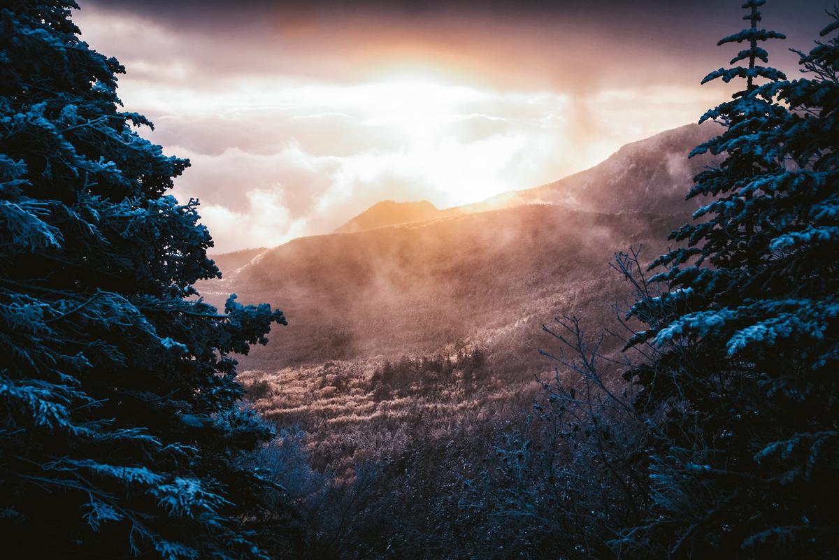 f:id:Narvik:20190510200157j:plain