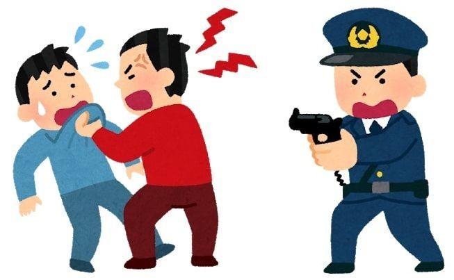 実力の支配と法の支配、人の支配