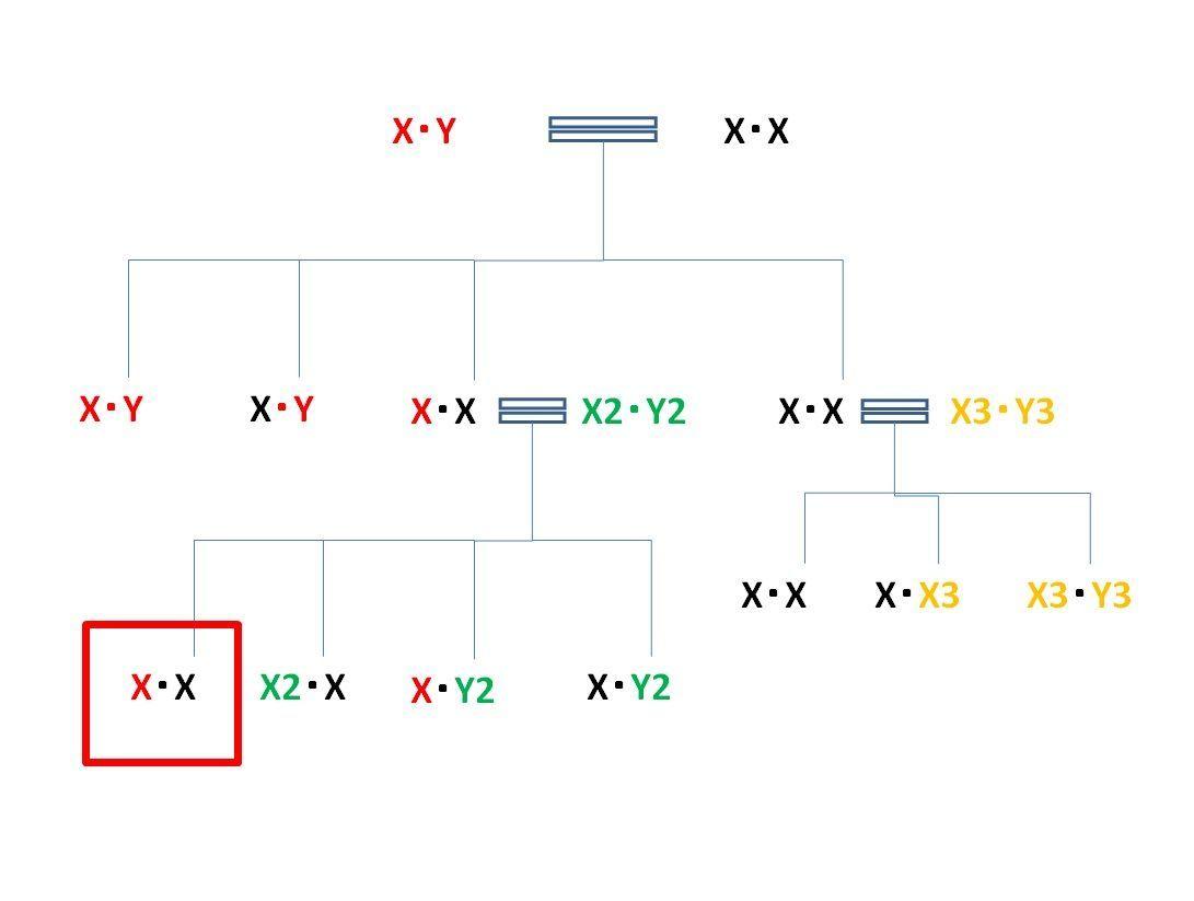 皇位継承】Y染色体遺伝子理論という劣化保守擬きのエセ科学が誤りで ...