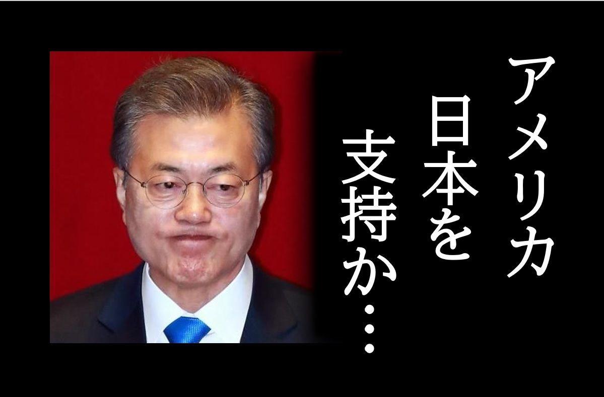 輸出管理問題、WTO紛争解決機関でアメリカが日本を支持