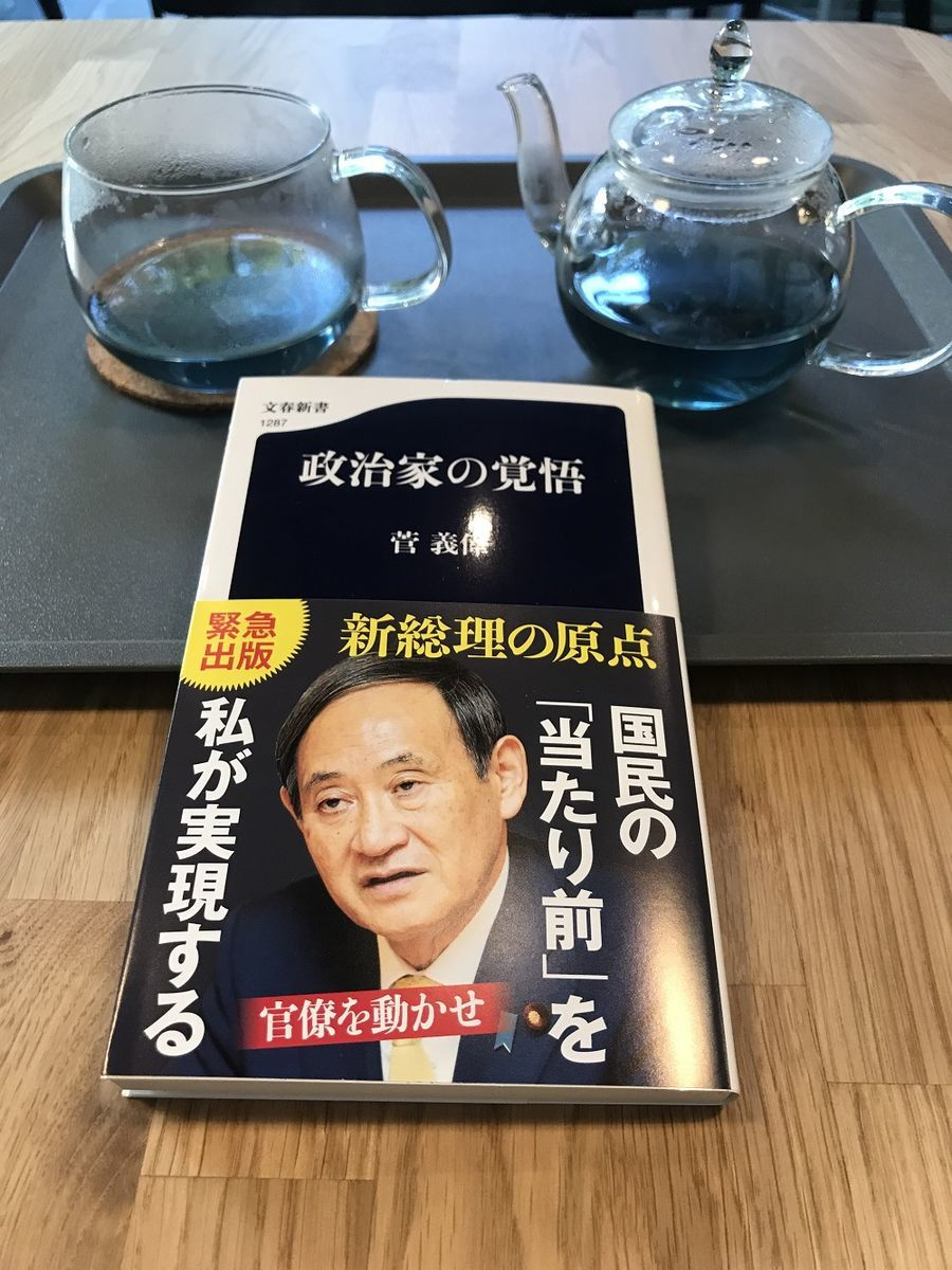菅義偉:政治家の覚悟、新書