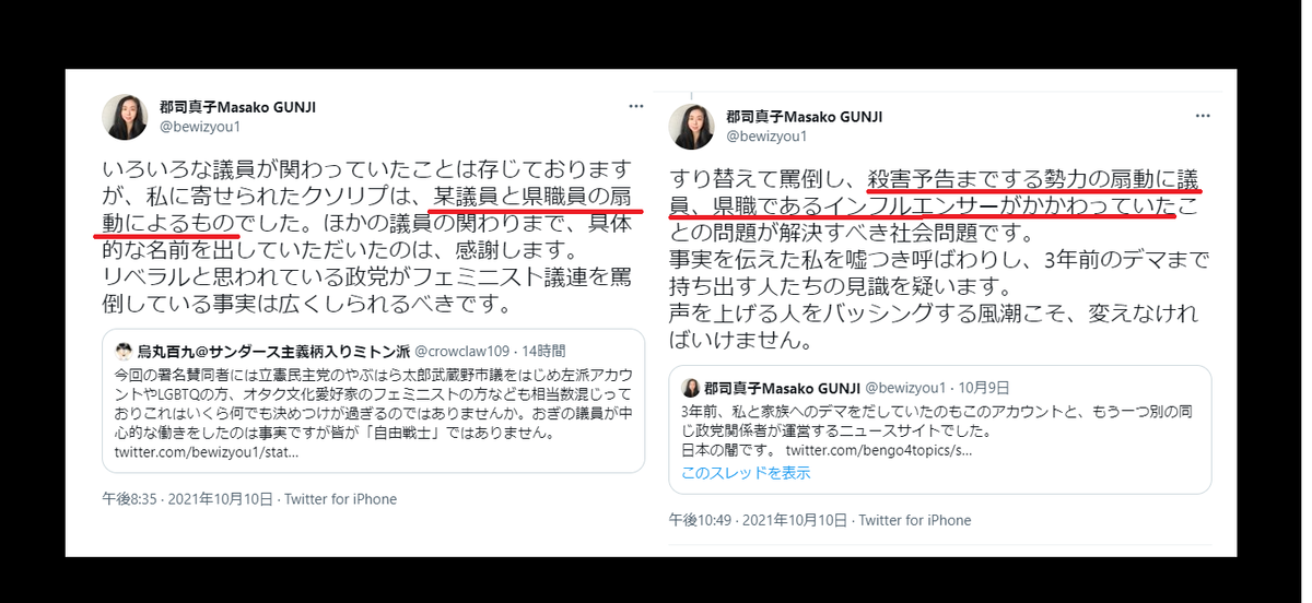 郡司真子のフェミニスト議連記者会見