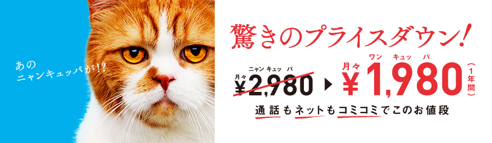f:id:Natsume0:20160628135532j:plain