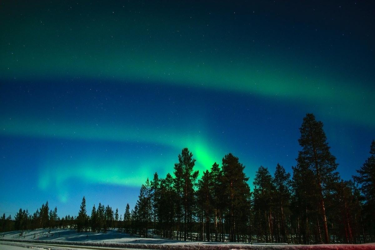 f:id:NatsuminScandinavia:20200607175011j:plain