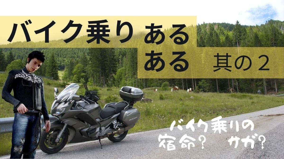 f:id:Nayunayu:20210103110242j:plain