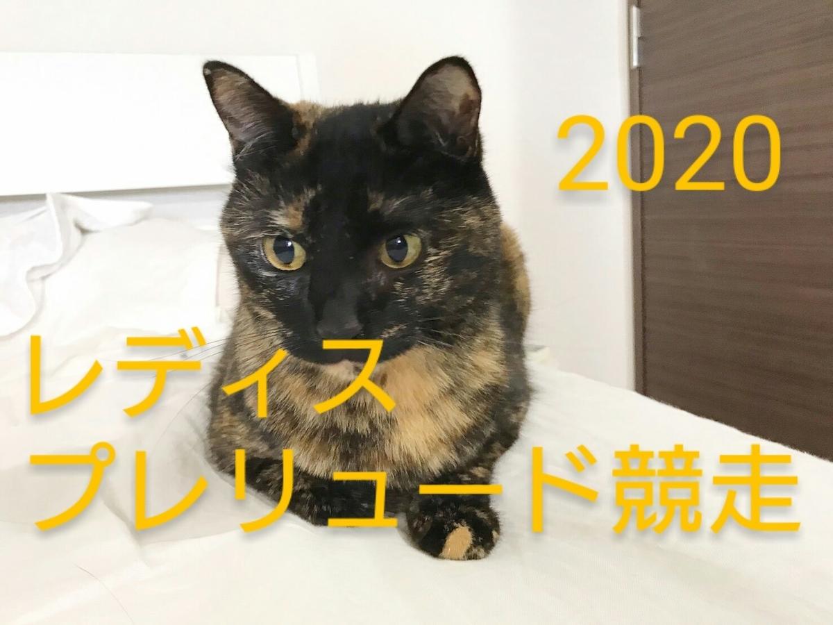 2020 レディス プレリュード