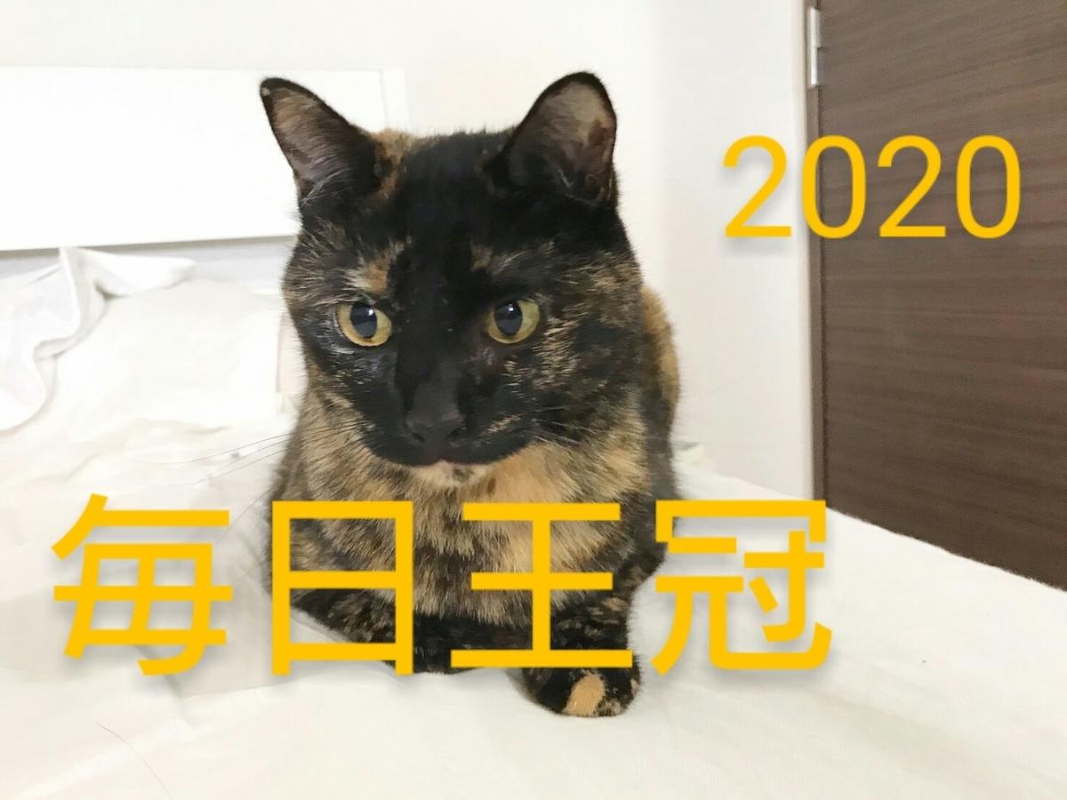 f:id:Nekokeiba:20201010213843j:plain