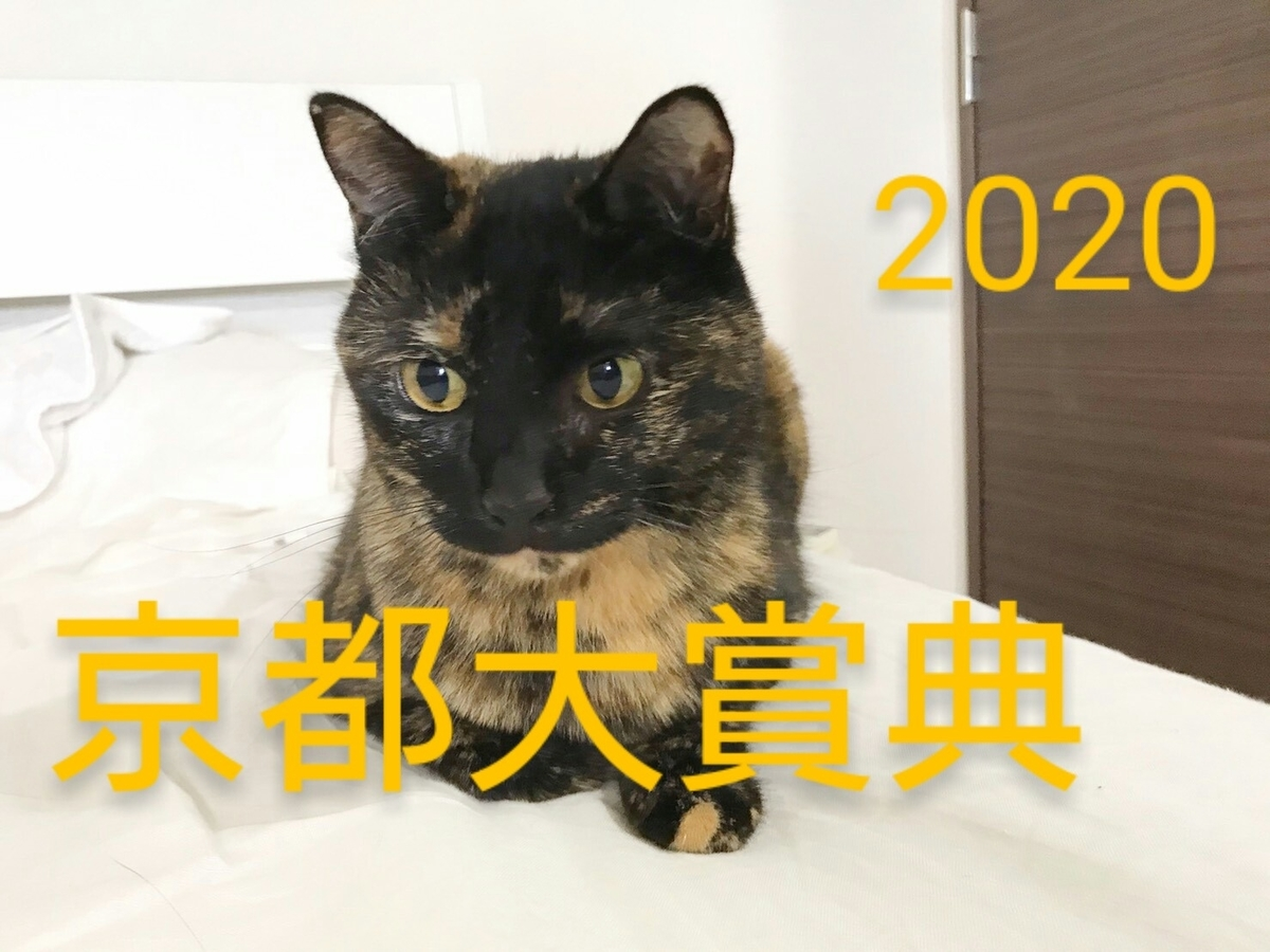 f:id:Nekokeiba:20201011091442j:plain