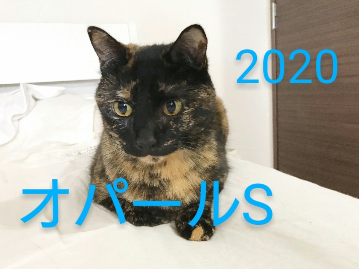 f:id:Nekokeiba:20201020182902j:plain