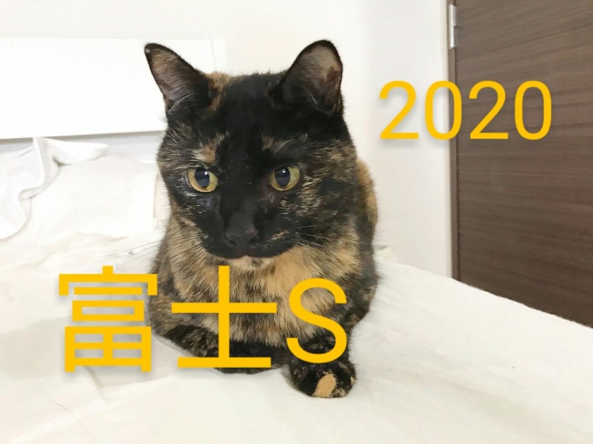 f:id:Nekokeiba:20201023212804j:plain