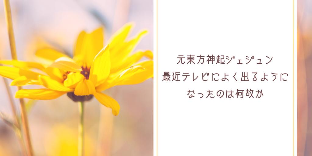 f:id:Nekosawa:20181218165812p:plain