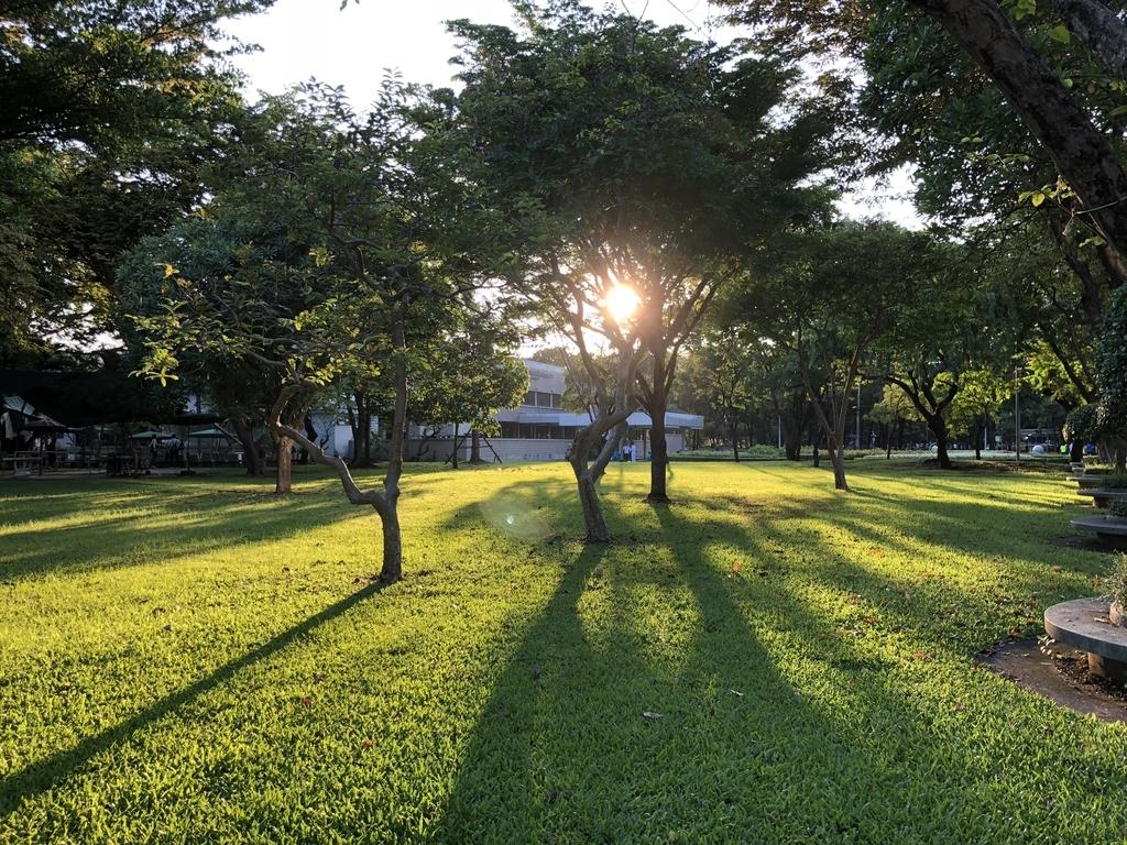 バンコク・ルンピニー公園の自然