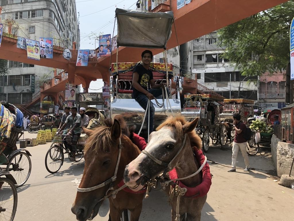 バングラデシュの交差点の馬