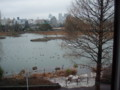 上野動物園モノレールから不忍池