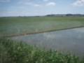 石巻線の田園風景