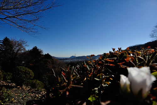 f:id:Nikon1J2dejicame:20140120183436j:plain