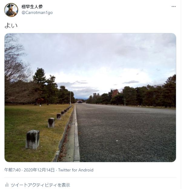 f:id:Ninjin:20210506215250p:plain