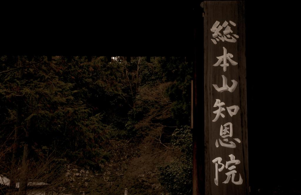 f:id:Nishikita:20190304172229j:plain
