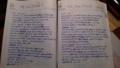 スケジュール帳がほぼ辞書