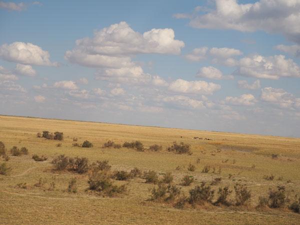 バスの車窓から見えた荒野