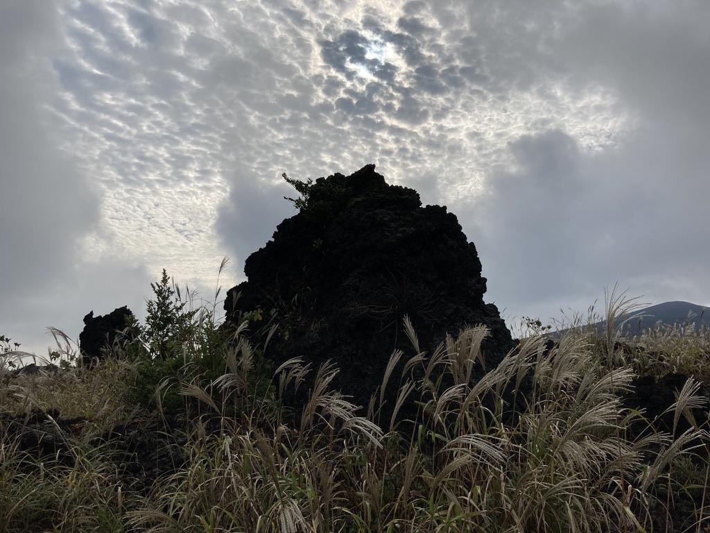 ジオ・ロックガーデンの巨岩