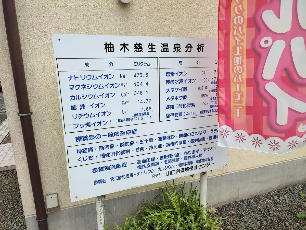 f:id:Nonomiya-Satoshi:20210619154047j:plain