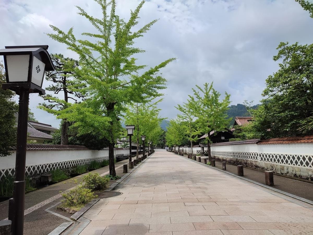 f:id:Nonomiya-Satoshi:20210619154225j:plain