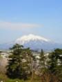 [携帯で風景]岩木山 from弘前公園