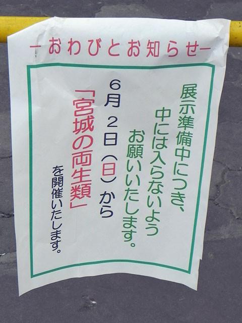 f:id:Noriyuki:20130531184006j:image