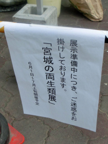 f:id:Noriyuki:20140525205455j:image