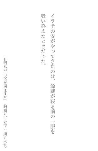 f:id:Nozomy_t:20181224100557p:plain