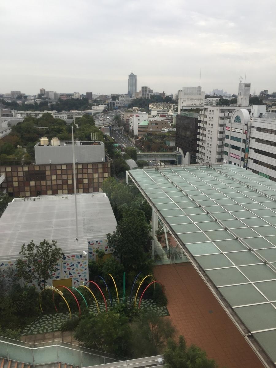 f:id:Nu-ma_Kaoruko:20201022174237j:plain