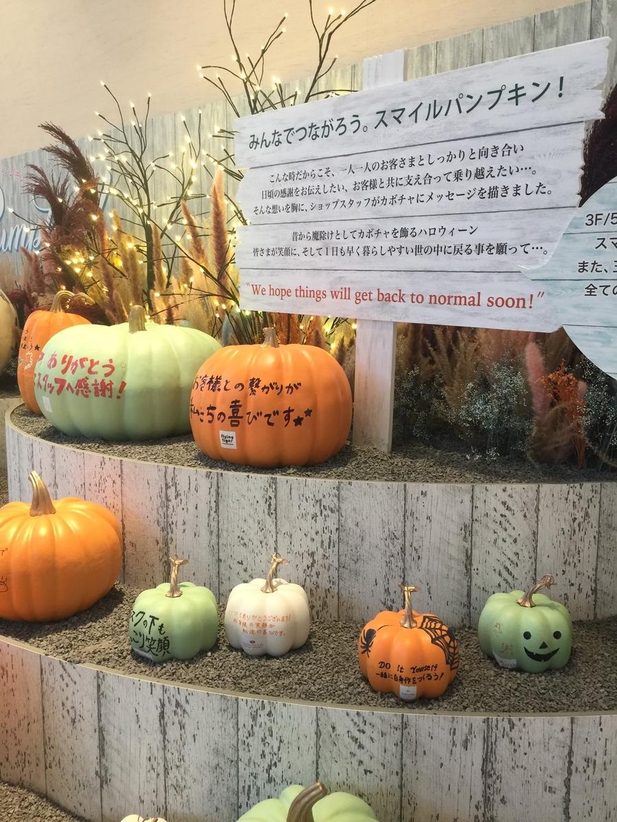 f:id:Nu-ma_Kaoruko:20201022174402j:plain