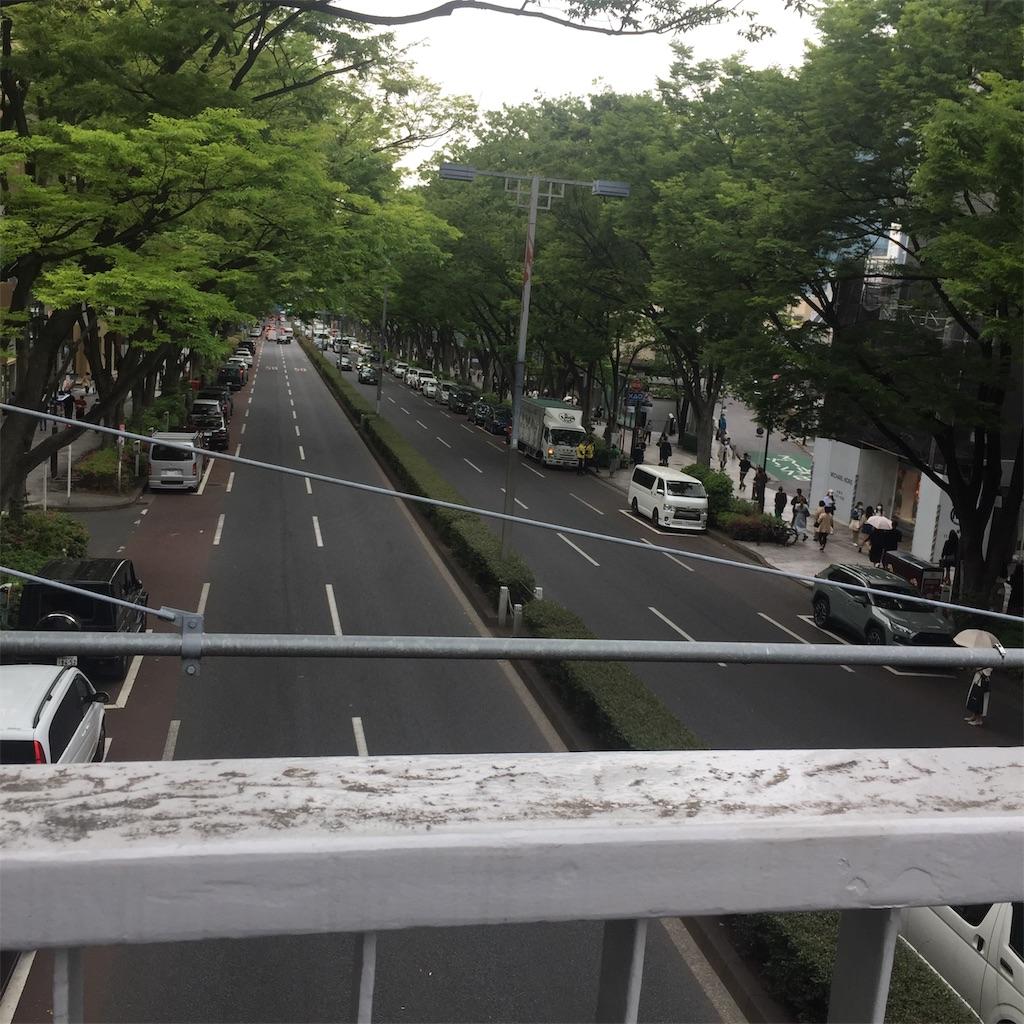 f:id:Nu-ma_Kaoruko:20210423210248j:image